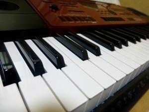 Gia sư đàn Organ tại nhà Vũng Tàu